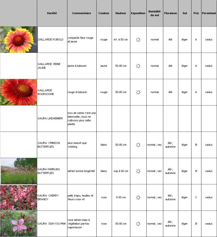 Plantes vivaces p pini re demoinet le catalogue gaillarde for Catalogue plantes vivaces