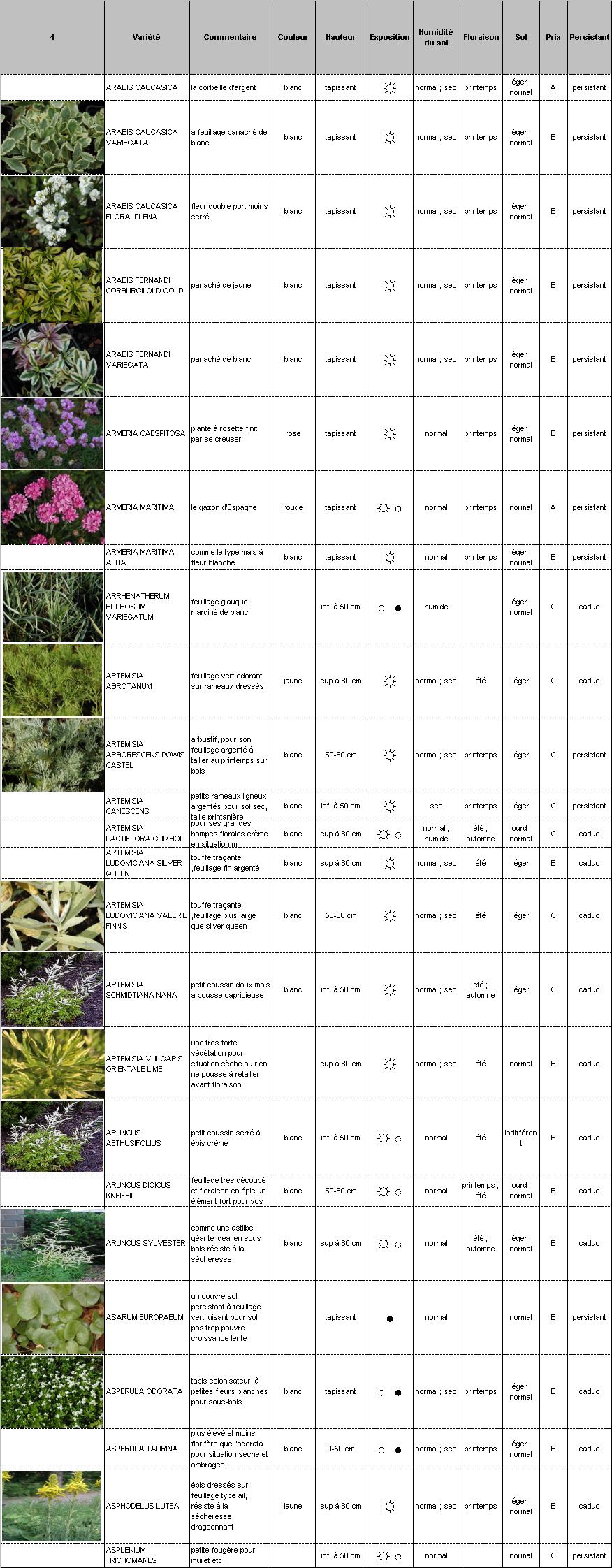 Plantes vivaces p pini re demoinet le catalogue arabis for Catalogue plantes vivaces